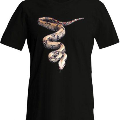 3D Python Slang